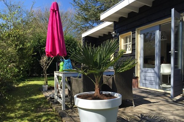 Beachhouse Zeeland  à Zoutelande - Image 1