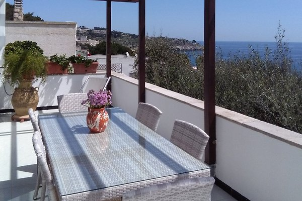 Cottage villa marcella casa vacanze in castro marina for Piccoli piani casa del sud del cottage