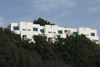 Residenza Gherly - Urlaub am Meer