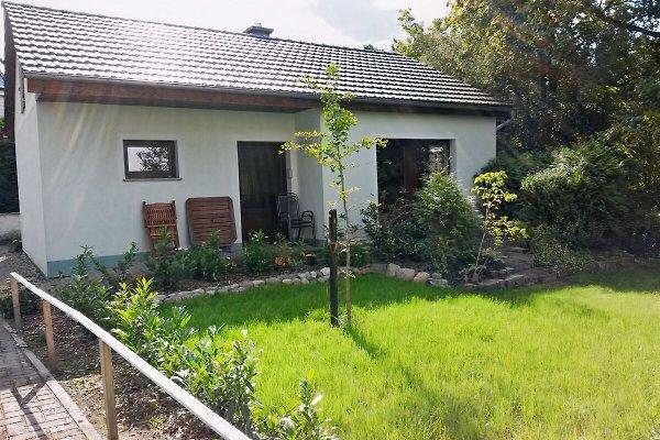 Ferienhaus Gappa in Bad Wilsnack - immagine 1