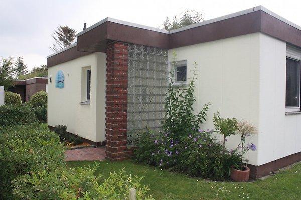 Ferienhaus DÜNENROSE à Bensersiel - Image 1
