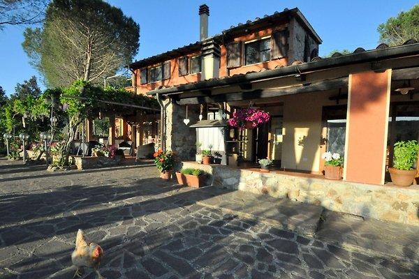 Agriturismo Pereti in Roccatederighi - Bild 1