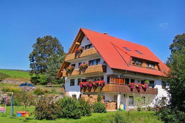 Ferienwohnungen Hundelbach en Lenzkirch -  1