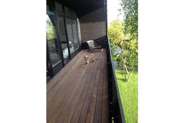 aussenposten ferienwohnung in garding mieten With katzennetz balkon mit ferienhaus garding nordsee