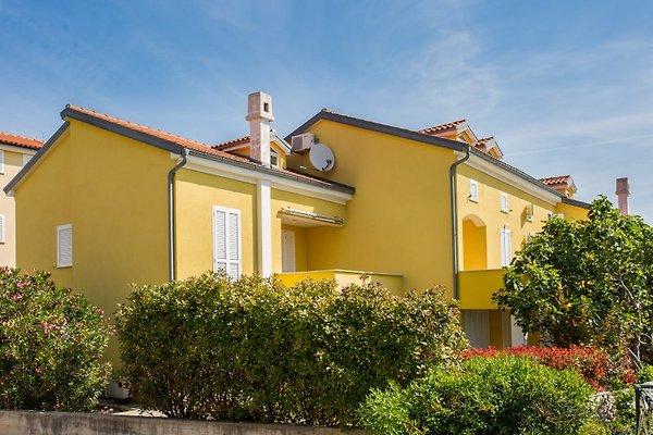 ApartmentsAnja, 15m de la plage à Dobrinj - Image 1