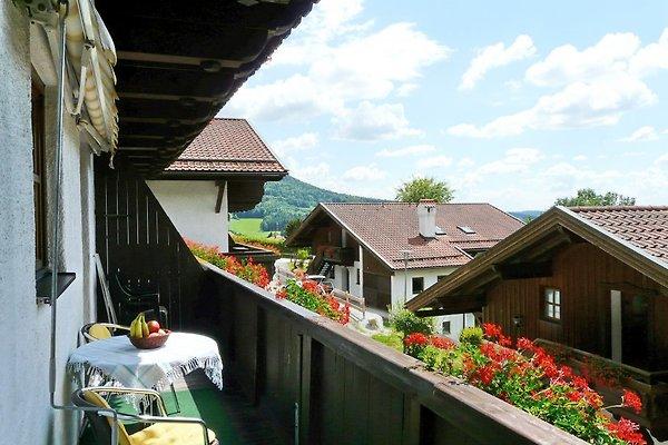 Apartamento en Hauzenberg - imágen 1