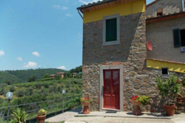 Die Casa Sergio