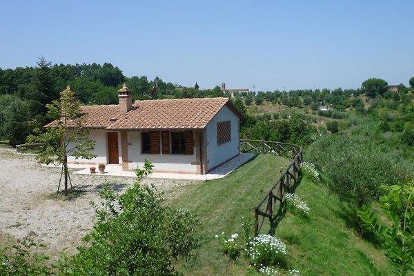 Casa Michela à Montopoli in Val d Arno - Image 1