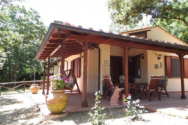 Casa Sole in Monteverdi Marittimo - immagine 1