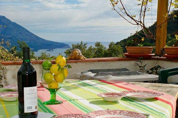 Ferienwohnung in Ferienhaus NEGRA à Budva - Image 1