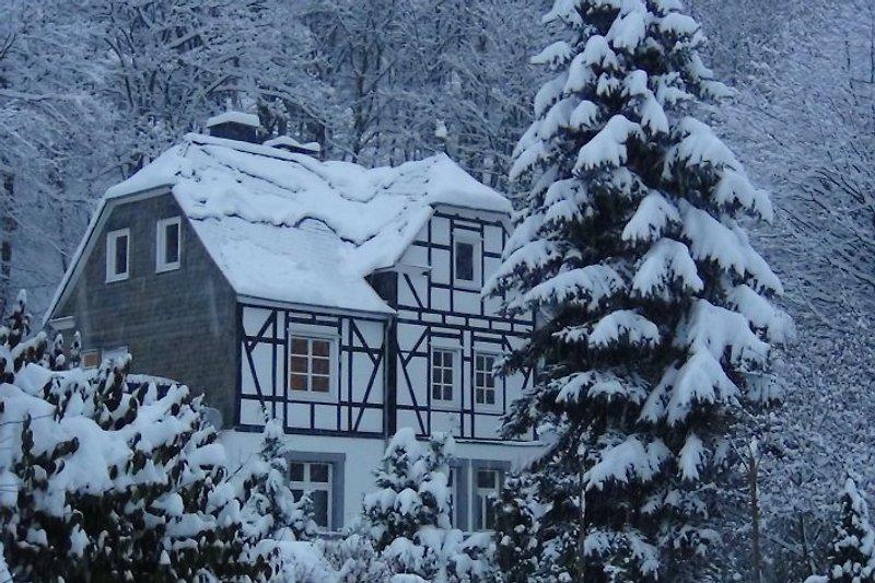 Traum im Schnee