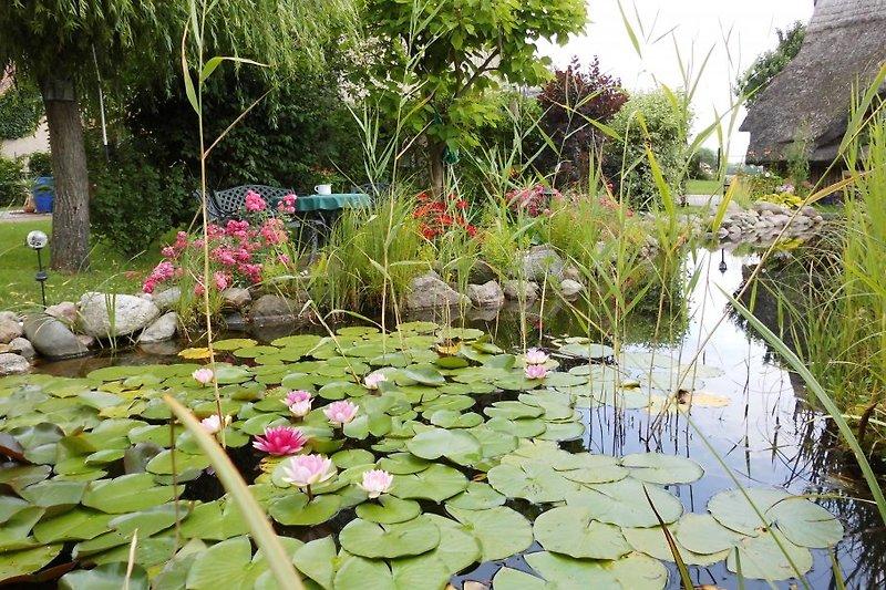 FH Gartenparadies mit Sauna/Kajaks in Mirow - immagine 2