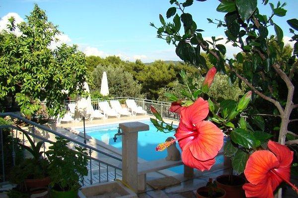 Apartamento Žgogo en Trogir - imágen 1