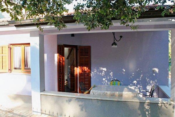 Silvestra - Appartement Villetta à Rovinj - Image 1