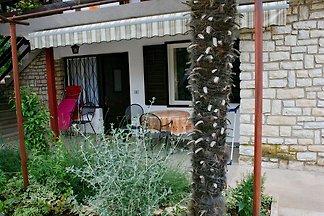 Silvestra - Appartement Palme