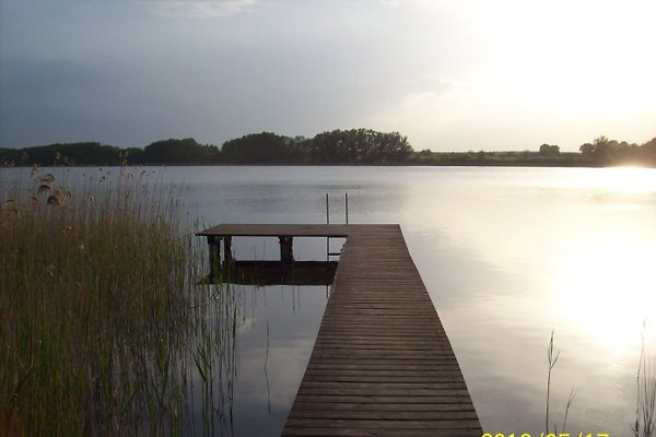 Forsthaus am See in Mirow - immagine 1