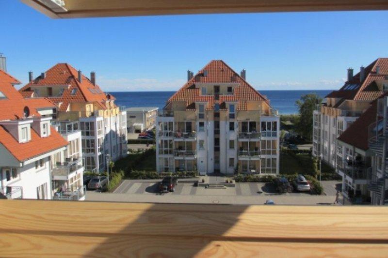 Blick von Küche, Galerie und Dachterrasse in den Strandpark bis auf die Ostsee