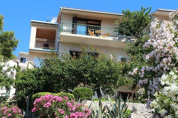 appartements Jagoda à Brela - Image 1