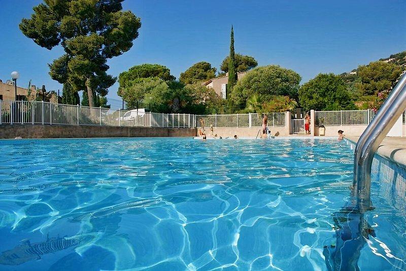 Pool der Ferienanlage