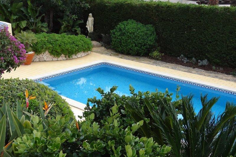 Grosser Pool in tropischen Garten