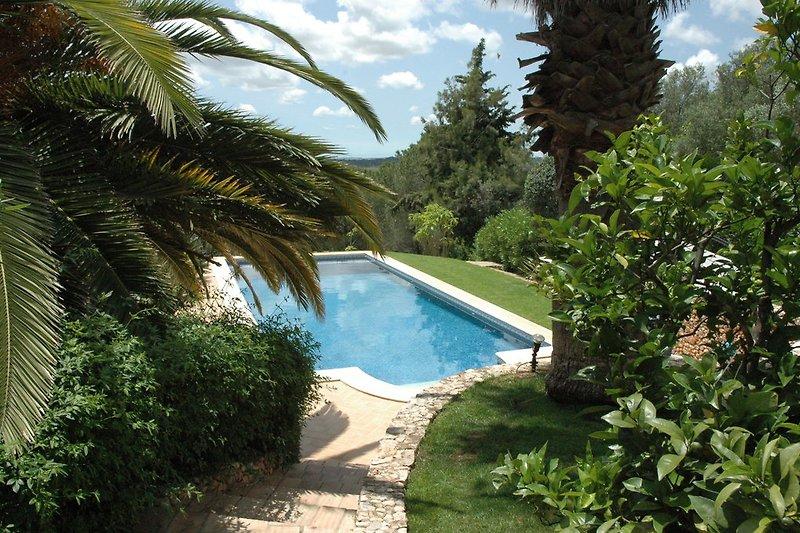 Blick von vom Haus auf den Pool