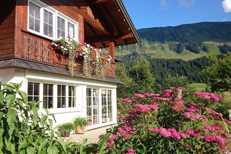 Sommerblumen am Haus Narzisse