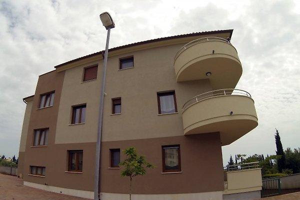 Villa Oliva -In der Nahe vom Strand in Premantura - Bild 1