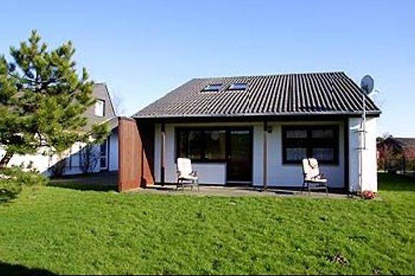 Ferienhaus Hering in Eckwarderhörne - Bild 1