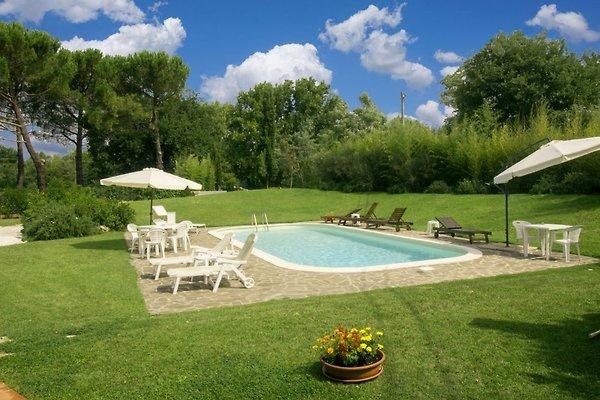Villa max 20 personnes avec piscine à Volterra - Image 1