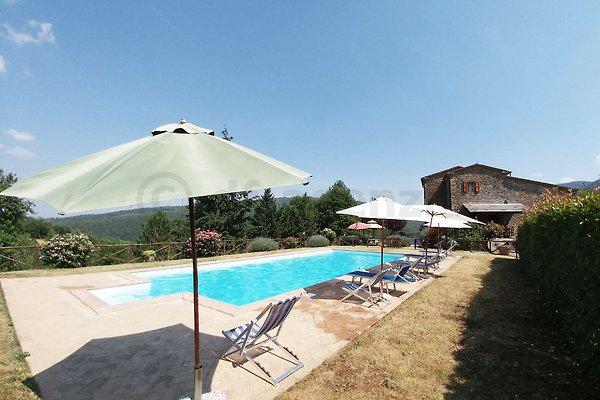 Villa jusqu'à 14 personnes avec piscine à Cortona - Image 1