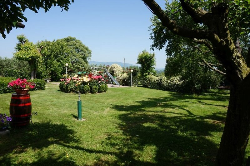 großer gepflegter Garten