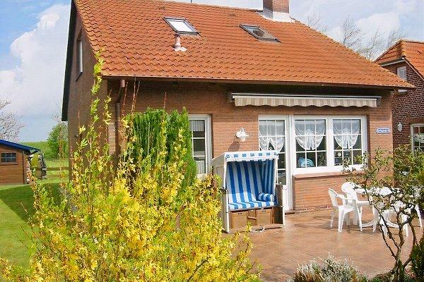 Maison de vacances à Neßmersiel - Image 1