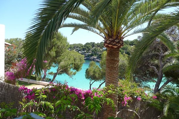 Bungalows Playa d'Or - appartamento con 2 camere. in Cala d´Or - immagine 1