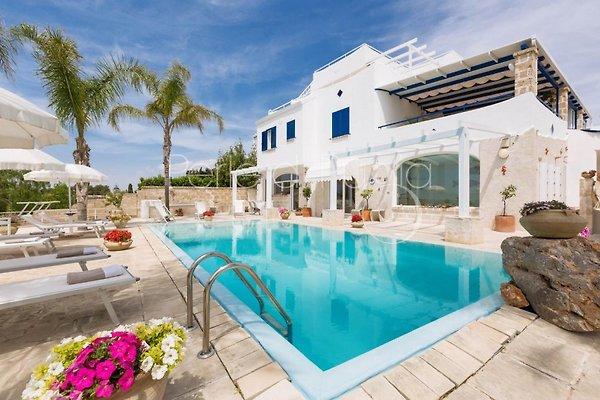Villa con piscina privata solu appartamento in santa maria al bagno affittare - Case americane con piscina ...
