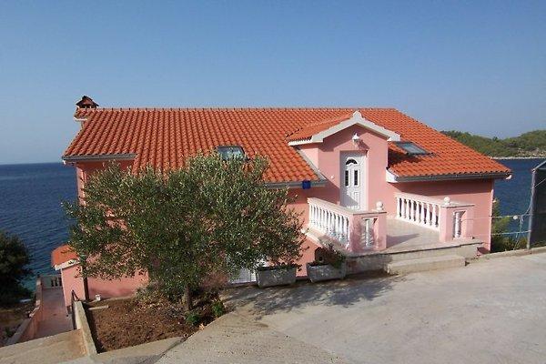 Ferienwohnung Korcula in Blato - Bild 1