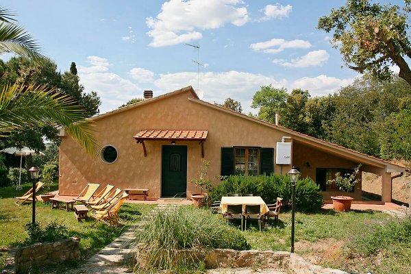 Casa Franco et Casa Anna à Campiglia Marittima - Image 1