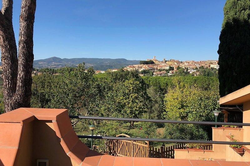 Blick auf Montescudaio