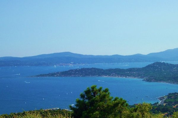 Blick auf Saint Tropez und Sainte Maxime