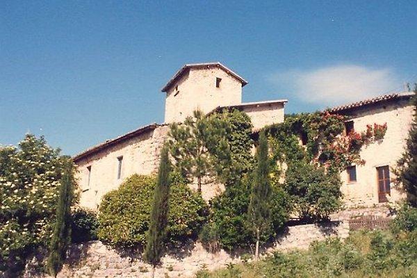 Podere Eduardo in Cerreto di Spoleto - Bild 1