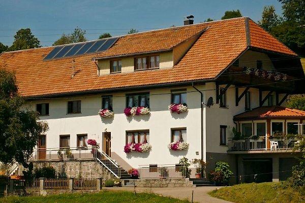 Familienferienhof-Berger à Dachsberg - Image 1