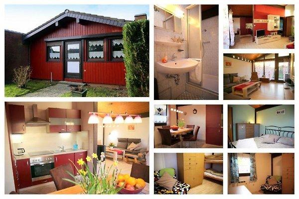 Villa Elli Angebot bis 15.03. in Butjadingen - Bild 1