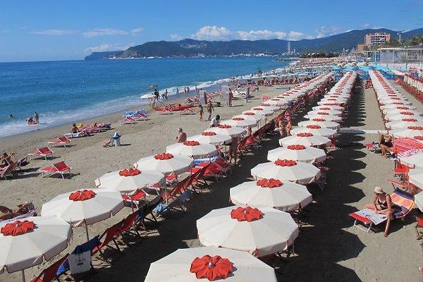 Alba Mare in Savona - immagine 1