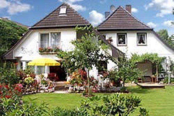 Haus Borby Ferienwohnungen in Eckernförde - immagine 1