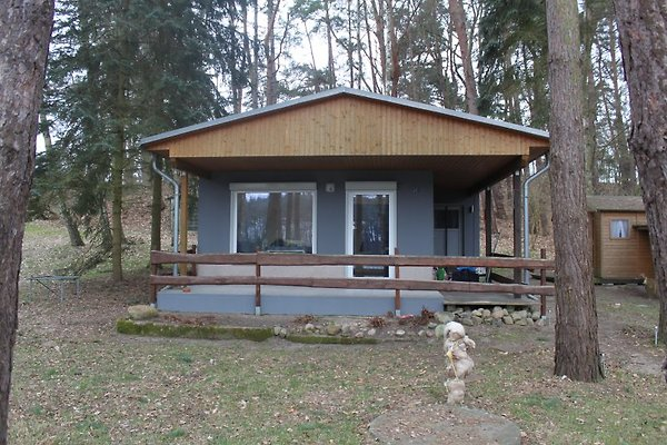 Ferienhaus Am Rochowsee in Luhme - Bild 1