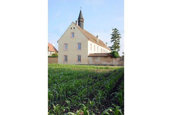Zum Alten Kloster L Ancien Couvent in Friesenheim - immagine 1