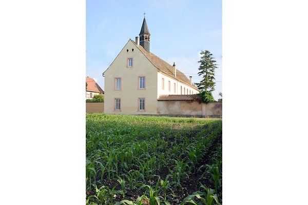 Zum Alten Kloster L Ancien Couvent à Friesenheim - Image 1