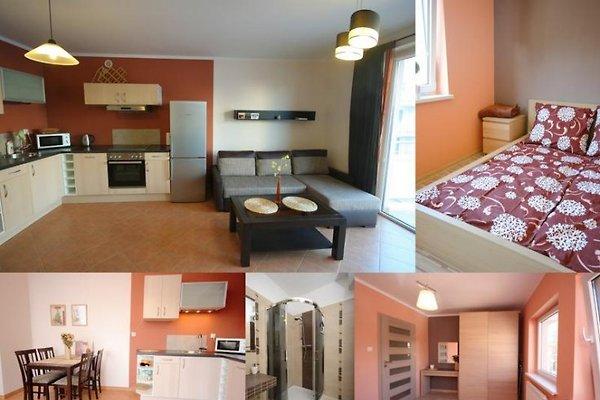Apartamento sorbete de fruta en Kolberg - imágen 1