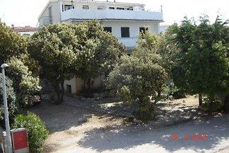 Appartamenti Ursula in Mandre