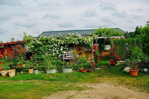 Maison de vacances à Sandhof - Image 1