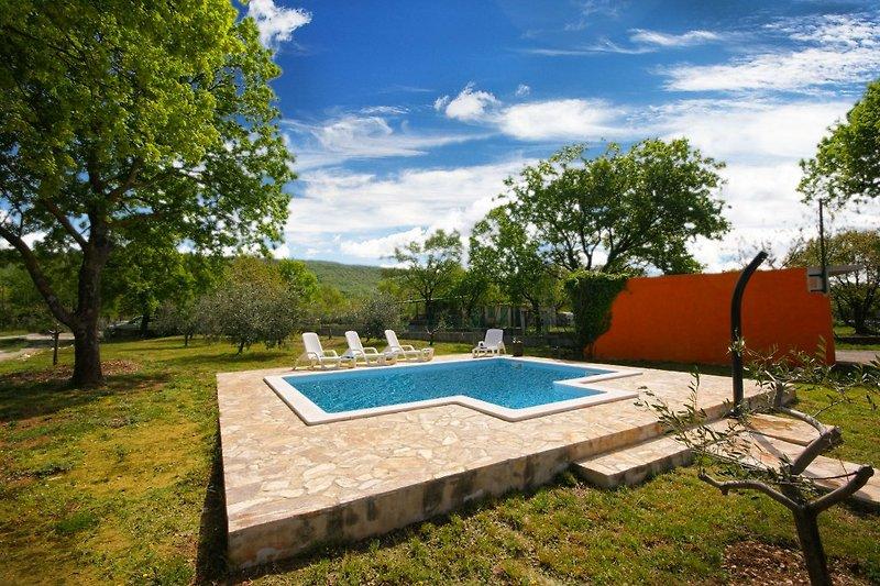 Privater Pool, 3000 qm Garten